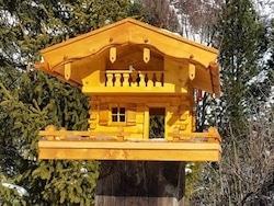 Erfahrungsbericht mit Grubert Vogelhaus