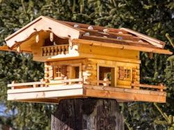 Vogelhaus Bauanleitung Erfahrungsbericht